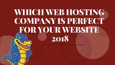which webhosting company is perfect for your website