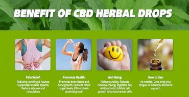 Header-CBD-Oil-Uses-Health-Benefits-Risks